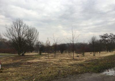 Park Rzeczny Ogród Płaszów