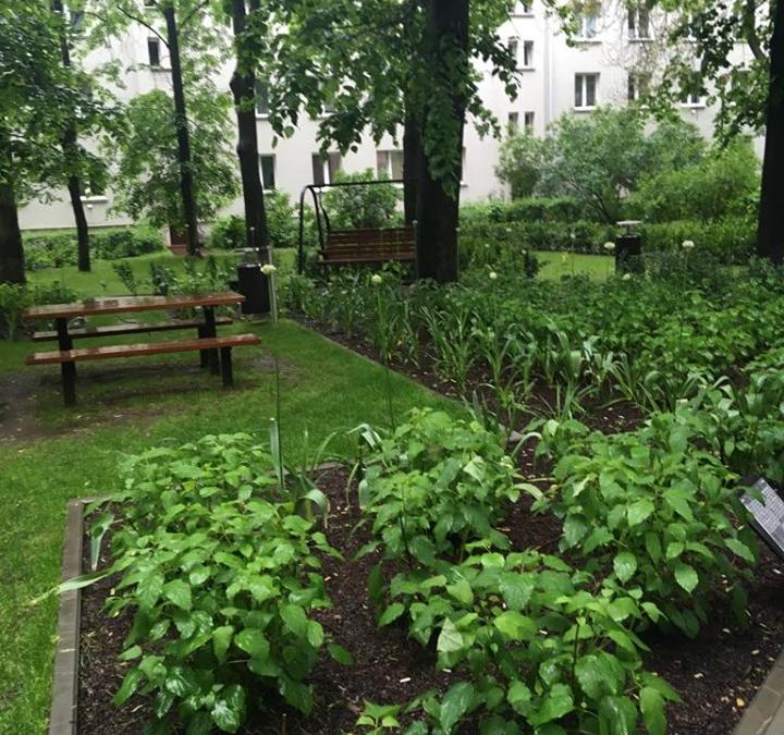 Ogród Krakowian – Lipowy